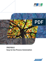 Pi Flyer Profibus e Web