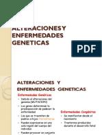 Alteraciones y Enfermedades Geneticas