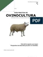 Manual Cria Ovinos Produccion Carne