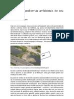 Problemas Ambientais - Valter Tardio