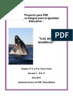 Proyecto Ambientes Acuaticos 2010 - PIIE