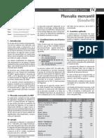plusvalia.pdf