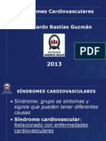 6. SemiolSindr CV2013