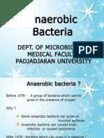 Anaerobic-Bacteria