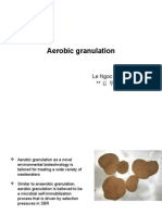 Aerobic Granulation