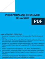 Perception and Consumer Behaviour