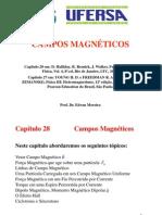 Ch28 Campos Magneticos