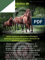 Trabajo Práctico de Zootecnia.pptx