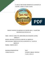 99451306 Atestat Impactul Depozitelor de Deseuri Asupra Mediului