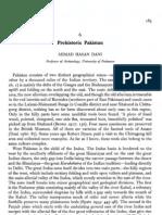 Dani - Prehistoric Pakistan