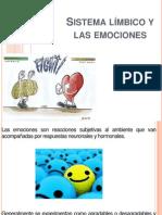 Sistema límbico y.pptx