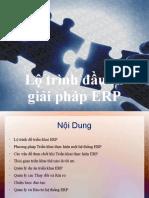 9 ERP. Lo Trinh Dau Tu Giai Phap