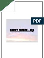 A História de Campo Grande-MS