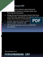 2-Perkembangan-ERP2
