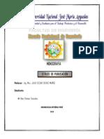 Monografia de Estilos de Publicacion_alex
