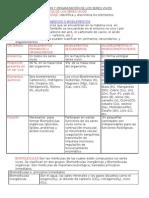 COMPOSICION Y ORGANIZACIÓN DE LOS SERES VIVOS.doc