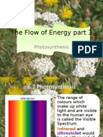 The Flow of Energy Part 3c
