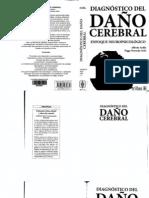 Diagnostico del daño cerebral (I parte)