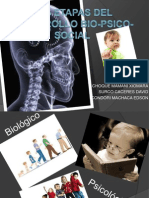 Las Etapas Del Desarrollo Bio-psico-social (2)