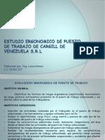 Estudio Ergonomico de Puesto de Trabajo (1)