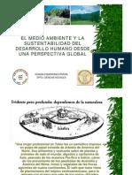 El Medio Ambiente y La Sustentabilidad Del Desarrollo Humano Desde Una Perspectiva Global, Gonzalo Mardones.