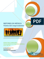 Medina_Avila_S1_TI1 PyMES en México.doc (1)