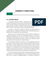 19. Livramento condicional.pdf