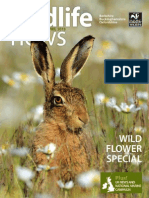 Wildlife News April 2013