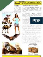 (2) mamiferos