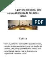 STF Cotas Raciais