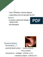 Aparat Digestiv II