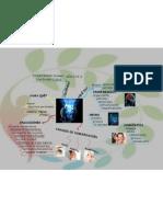 Programación Neuro Lingüistíca mapa mental