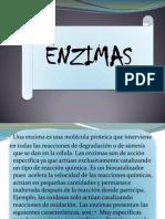 enzimas....BiOlOgIa