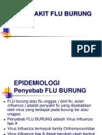 Flu Burung Dan Flu Babi