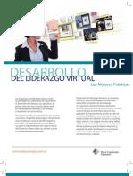 Guia Desarrollo Del Liderazgo Virtual