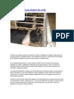 A.PLAN SANITARIO EN UN CRIADERO DE CERDOS.docx
