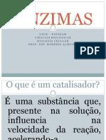 4. ENZIMAS