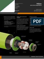 Rivet 2010 - Polines.pdf