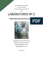 Lab. 2 Preconcentracion en Jigs