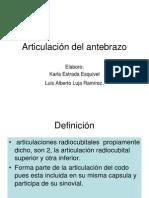 Articulación del antebrazo