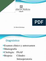 2. Diagnostico Positivo