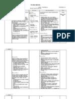 plan anual 7º año 2013