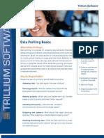 Data Profiling Screen