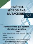 GENÉTICA MICROBIANA- Mutaciones