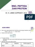 Asam Amino, Peptida Dan Protein - Copy