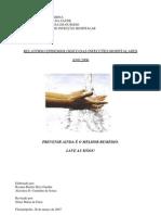 Relatorio IHs 2006- Dados Importantes