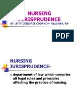 123740445 Nursing Jurisprudence