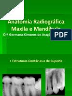 Anatomia_mandibula e Maxila