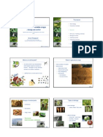 Animal Pests in Arable Crops