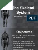 Ana&Physio 5 - The Skeletal System.pdf